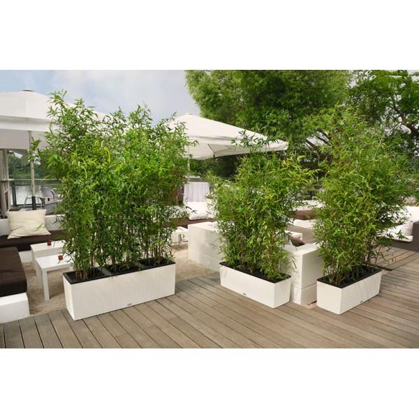 Vaso trio cottage 30 bianco 100 x 32 x h 34 cm con for Materiale irrigazione