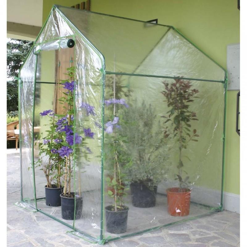 Serra clematis per piante e fiori 155x155xh205cm for Serra per piante