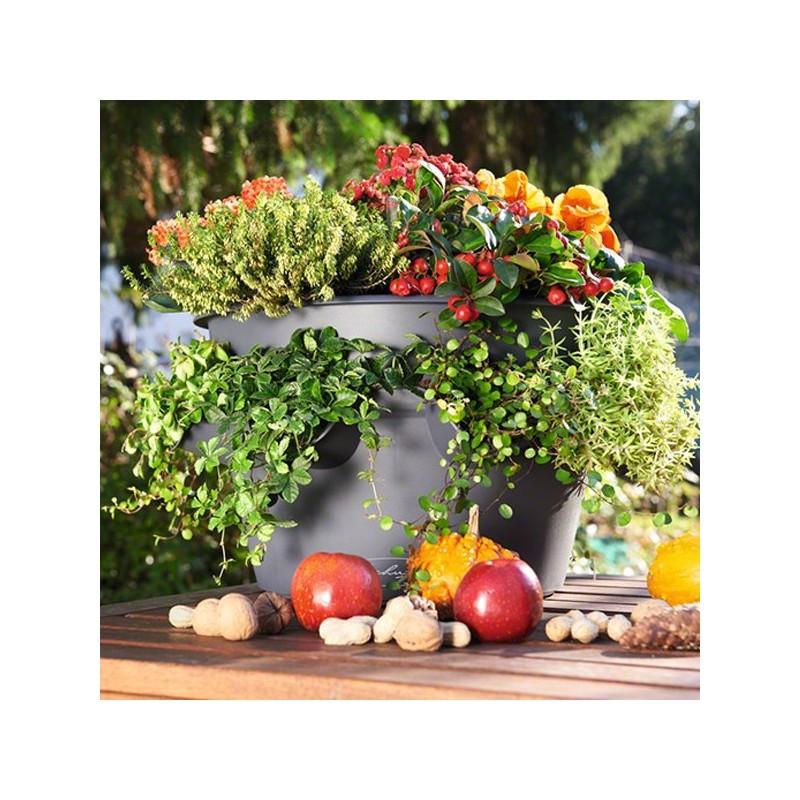 Vaso cascada color con sistema di auto irrigazione for Sistema di irrigazione per vasi