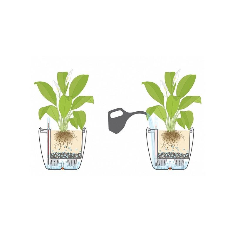 Vaso quadro ls 28 con sistema di auto irrigazione for Sistema di irrigazione per vasi