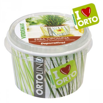 Vaso Ortolino Erba Cipollina - VERDEMAX 2023 - In regalo Etichetta Adesiva per personalizzare il tuo Ortolino