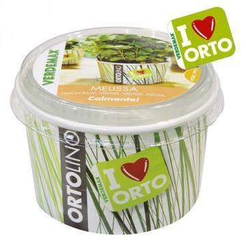 Vaso Ortolino Melissa - VERDEMAX 2024 - In regalo Etichetta Adesiva per personalizzare il tuo Ortolino