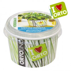 Vaso Ortolino Menta - VERDEMAX 2025 - In regalo Etichetta Adesiva per personalizzare il tuo Ortolino