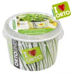 Vaso Ortolino Prezzemolo - VERDEMAX 2027 - In regalo Etichetta Adesiva per personalizzare il tuo Ortolino