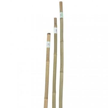 Tutore in bamboo serie pesante - h cm 180, Ø mm 22-24 - VERDEMAX 6636