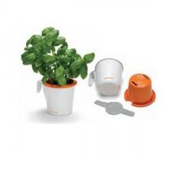 Vaso per piante Aromatiche FISKARS Ø 90 mm - 111821