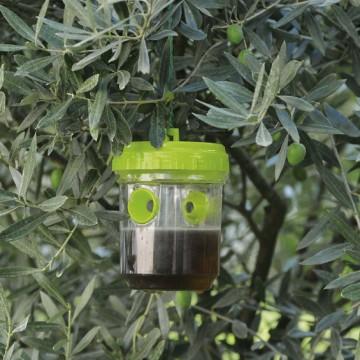 Trappola per vespe e insetti vari in Plastica - VERDEMAX 4529