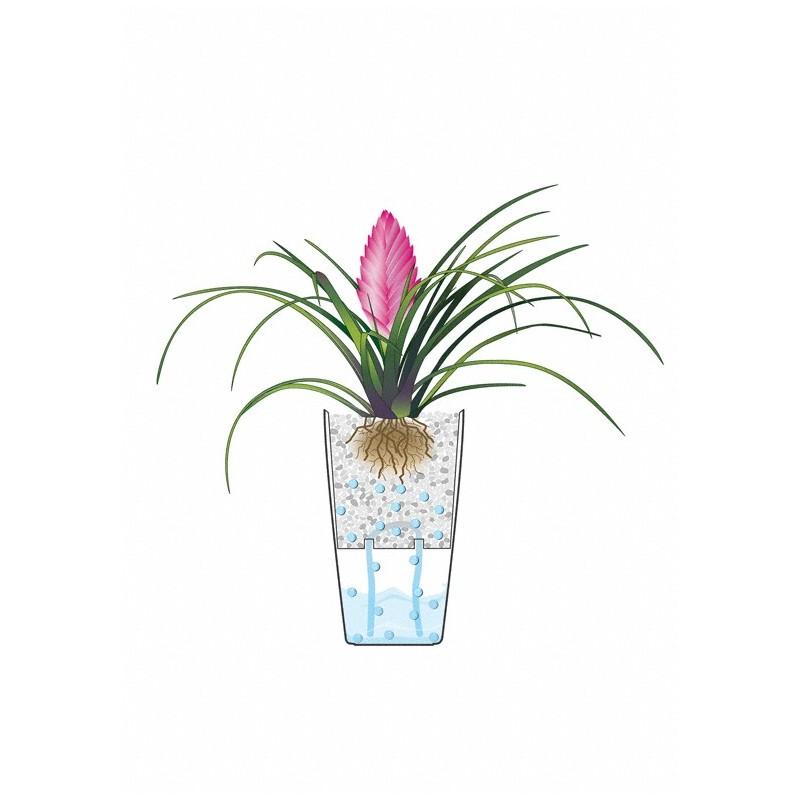 Vaso mini cubi con sistema di auto irrigazione for Sistema di irrigazione per vasi