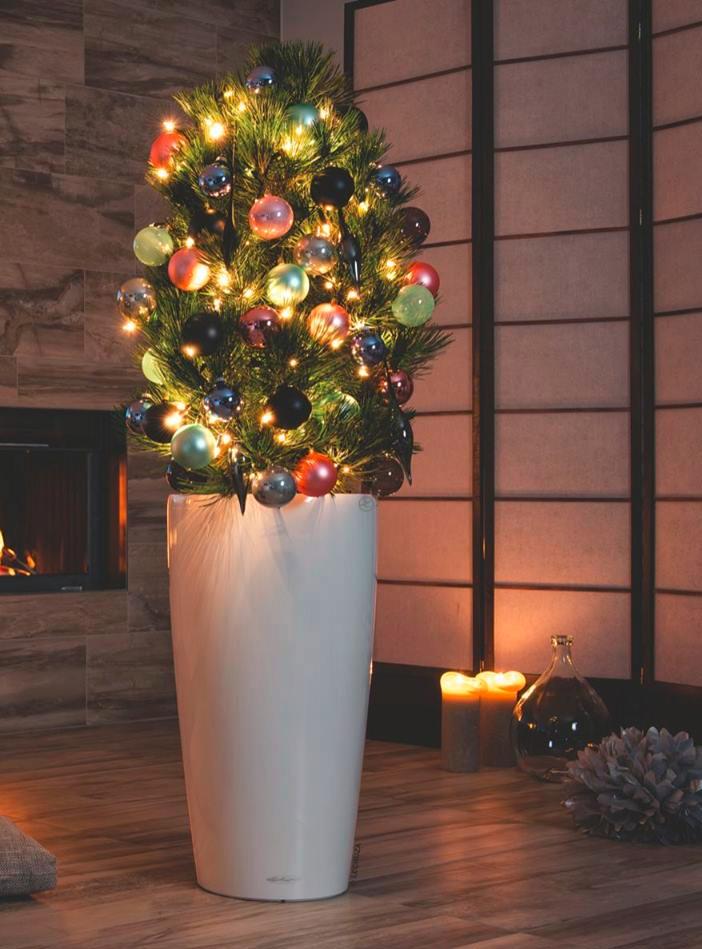 Un originale vaso per l 39 albero di natale mollo store - Alberi da interno ...