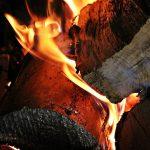 Cottura forno a legna