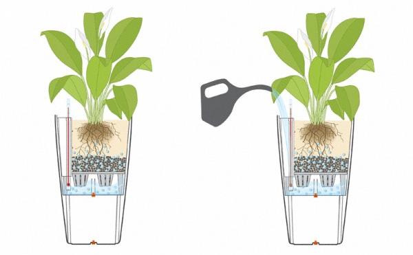 Vasi autoirriganti perfetti per il tuo tempo e per la for Sistema irrigazione fai da te balcone