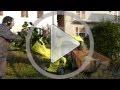 Agrinova Biotrituratore Zeffira